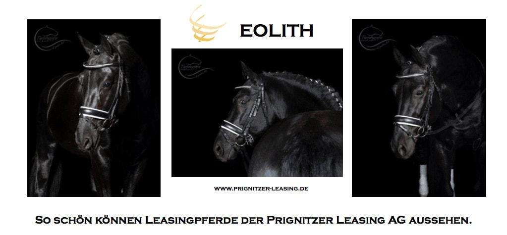 EOLITH - Leasingpferd der Prignitzer Leasing AG