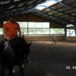 Reiten in der Reithalle auf dem Pferdehof Zislow - PLAG-Team